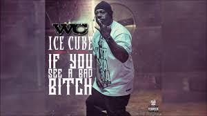 WC-ի և Ice Cube-ի նոր երգը՝ If You See a Bad Bitch