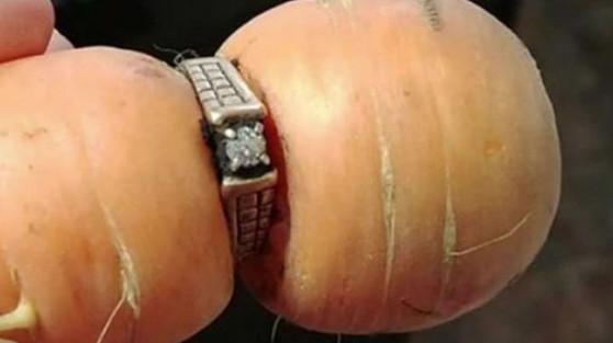Կինը 13 տարի առաջ կորցրած ամուսնական մատանին գտել է գազարի վրա